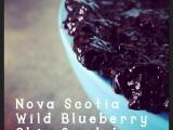 Nova Scotia Wild Blueberry Chia SeedJam